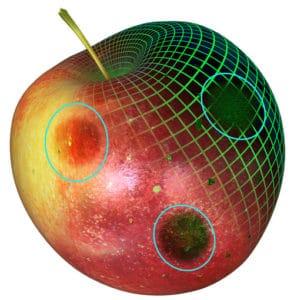 Fruit and Vegetable Scanner